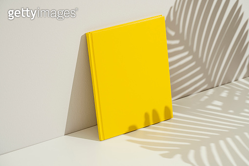 Book cover mockup, template
