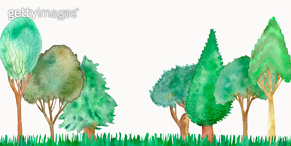 Watercolor hand painted nature forest plants set composition with green leaves and branches on spruce, oak, cypress, elm tree trunk collection on a green grass landscape on the white background