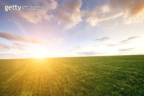 Green meadow and blue sky with clouds and sun with rays
