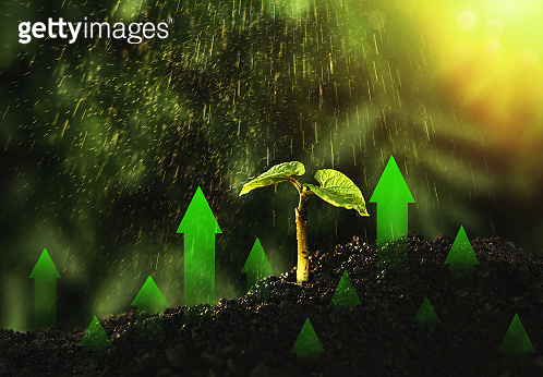 Green business investment. Development and growth of ecology in worldwide.  New technologies concept.
