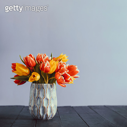 Fresh spring yellow and pink tulips bouquet in blue vase standing on black wooden table with gray background. Festive flowers for mother's or women's day. Mockup for greeting square card. Copy space.