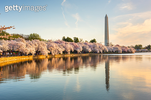 Washington DC, USA in Spring