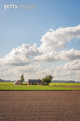 Farm with shed in the middle of the fields