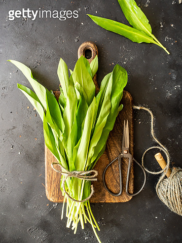 A bunch of fresh wild garlic on a wooden cutting board, secateurs and string on a gray background, top view
