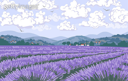 Nature Scene with lavender Field, Mountains, Clouds in Sky