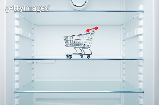 Shopping cart in an empty fridge