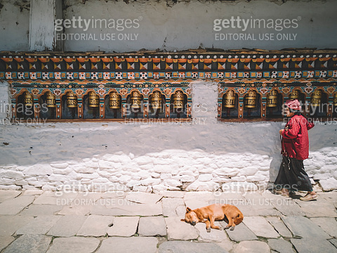 An old bhutanese female at the temple praying at prayer wheel  while a street dog lying down resting in the afternoon in paro bhutan