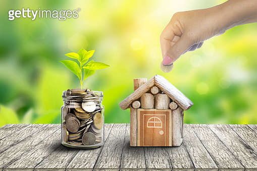 Plant Growing In Savings Coins. house and coin placed on the side. planning savings money of coins to buy a home concept for property,