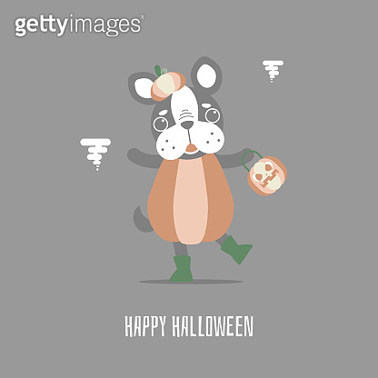 happy halloween holiday festival with cute french bulldog and pumpkin and cat holding broom