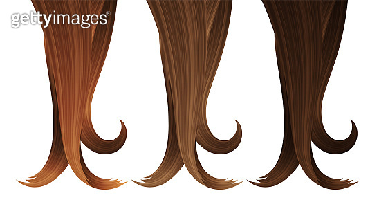 Locks of Hair in Various Colors. Vector Realistic 3d Illustration. Design Element for Hairdressers