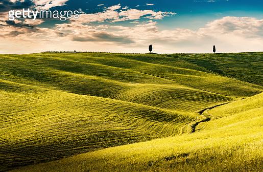 Sunny landscape from Val d'Orcia, Tuscany, Italy