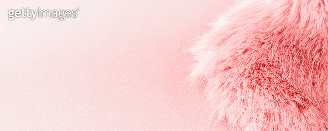 Pink faux fur detail flat lay. Social media