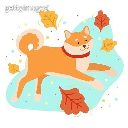 Cute shiba inu. Autumn season illustration.