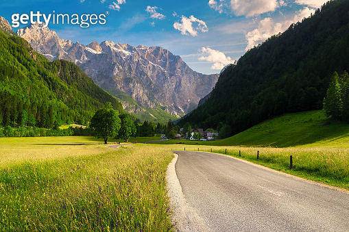 Alpine landscape with flowery meadows and mountains, Kamnik Alps, Slovenia
