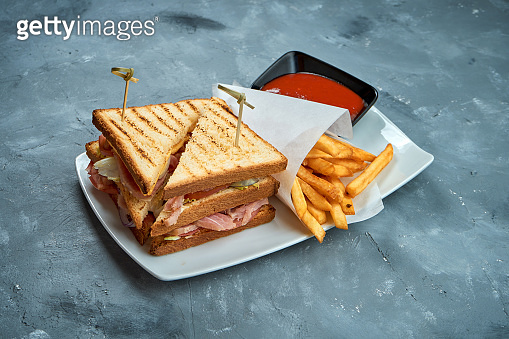 Appetizing sandwich with tuna, tomatoes and cheddar cheese in a white plate garnished with fries