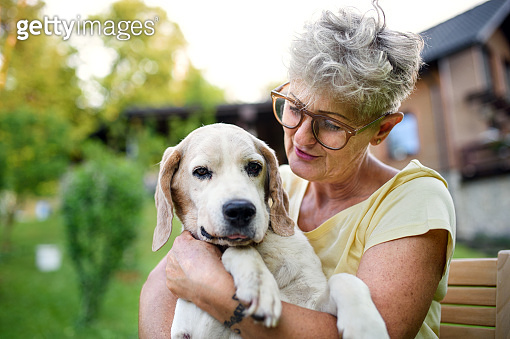 Portrait of senior woman standing outdoors in garden, holding pet dog.