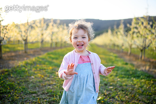 Small toddler girl running outdoors in orchard in spring.