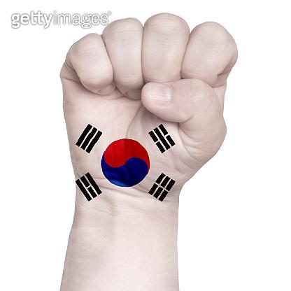 Fist of South Korea flag painted, multi purpose concept