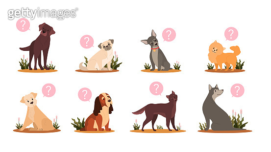 Cute dog with question mark set. Collection of purebread dog of various breed with