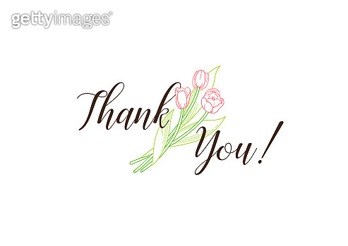 Vector thank you message. Lettering with tulips flower.