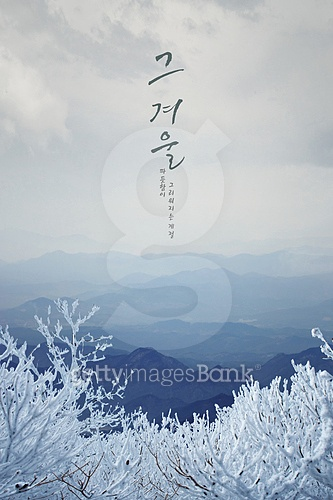 겨울, 백그라운드, 자연풍경, 눈, 계절, 포스터