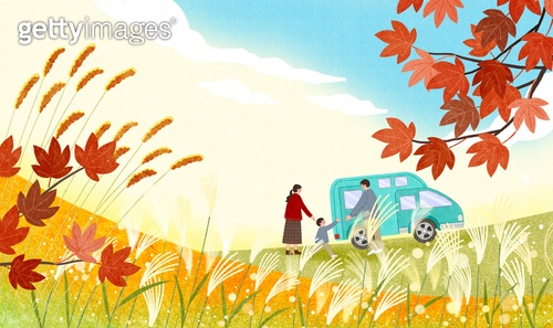 가을, 캠핑, 취미, 단풍 (가을), 갈대 (식물)