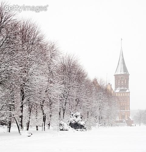 Cathedral church of Kaliningrad (K?nigsberger Dom).