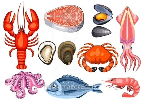 Various seafood set. Illustration of fish, shellfish and crustaceans