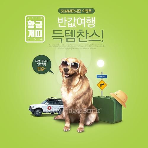 웹배너 (배너), 쇼핑, 강아지, 찬스, 세일 (사건), 개 (개과), 개띠해 (십이지신), 리트리버, 여행, 여행가방