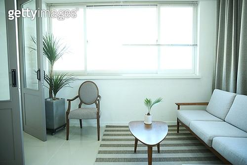 창문 (인조물건), 거실, 소파 (좌석),인테리어,가구,의자,테이블,화분,카펫