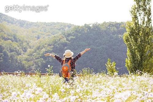 한국인, 여성, 하이킹 (아웃도어), 여행, 아웃도어 (레크리에이션), 여유로운주말 (레저활동), 걷기, 등산지팡이, 팔벌리기 (제스처), 햇빛, 자유 (컨셉), 팔벌리기, 뒷모습