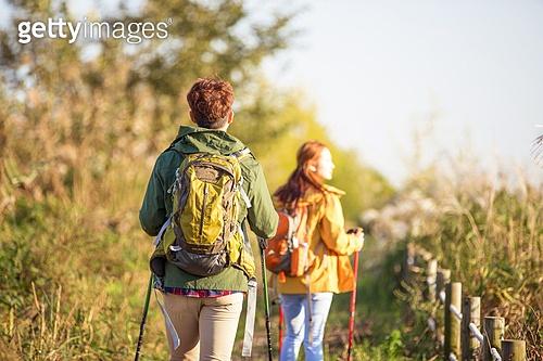 한국인, 남성 (성별), 여성, 하이킹 (아웃도어), 여행, 커플 (인간관계), 아웃도어 (레크리에이션), 여유로운주말 (레저활동), 걷기, 등산지팡이, 자작나무, 숲, 산림욕, 뒷모습