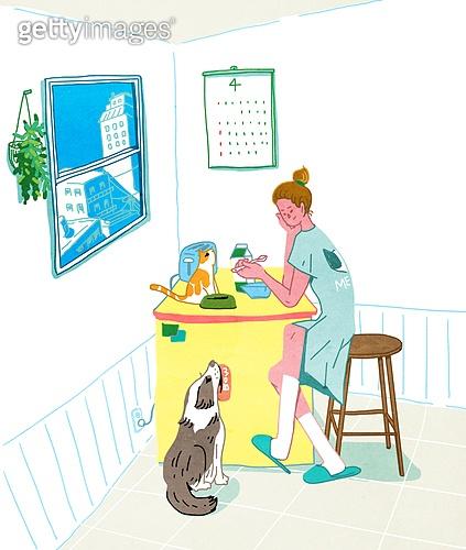 라이프스타일, 독신 (역할), 싱글라이프 (주제), 애완동물 (길든동물), 혼밥, 주방, 강아지, 고양이 (고양잇과)