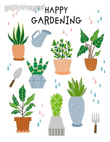 원예 (레크리에이션), 홈가드닝, 원예장비 (장비), 취미, 식물, 화분, 선인장, 다육식물, 방울 (액체)
