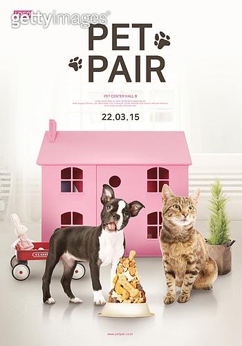 라이프스타일, 전시 (문화와예술), 포스터, 애완동물 (길든동물), 고양이 (고양잇과), 강아지