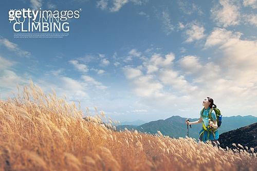 백그라운드, 풍경 (컨셉), 여행, 배낭여행자 (여행하기), 휴가, 라이프스타일, 하이킹 (아웃도어), 갈대 (식물)