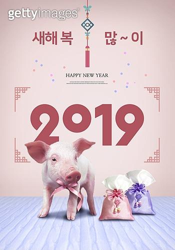 새해 (홀리데이), 2019년, 타이포그래피 (문자), 포스터, 돼지 (발굽포유류), 복주머니 (한국문화), 노리개, 돼지띠해 (십이지신)