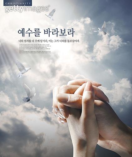 기독교, 믿음 (컨셉), 교회, 종교, 천주교, 희망, 십자가