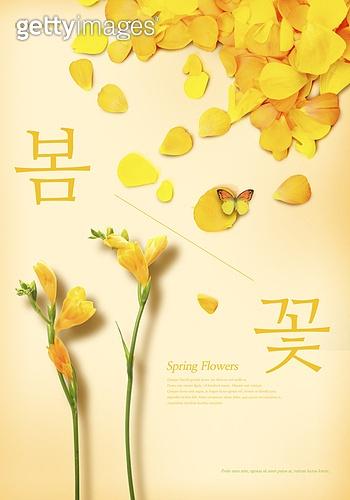 봄, 계절, 꽃, 파스텔톤 (색상강도)
