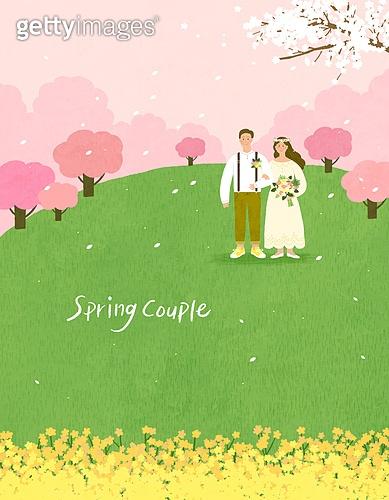 봄, 계절, 꽃, 꽃놀이, 커플, 사랑 (컨셉), 잔디밭 (경작지), 공원, 청년 (성인), 벚꽃, 벚나무 (과수), 결혼 (사건), 스몰웨딩