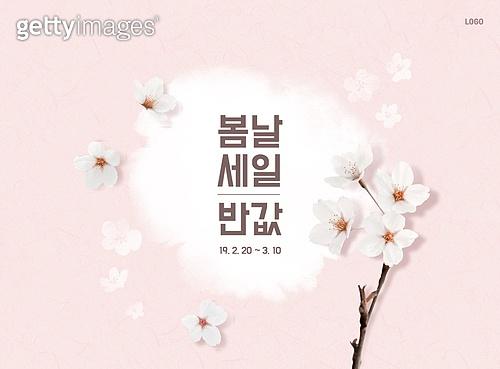 봄, 세일, 꽃, 벚꽃, 배너
