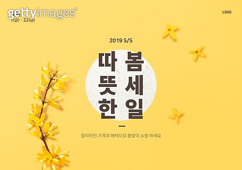 봄, 세일, 꽃, 개나리, 배너