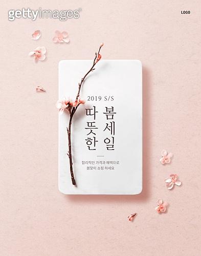 봄, 세일, 꽃, 배너