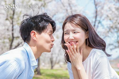 커플 (인간관계), 봄, 여유로운주말 (레저활동), 벚꽃, 데이트, 미소, 행복, 장난치기 (감정), 딴청