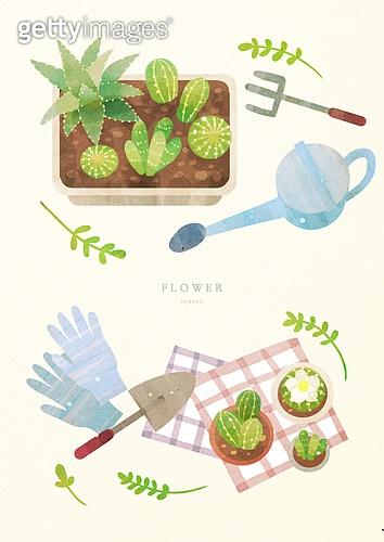 원예 (레크리에이션), 식물, 취미, 원예장비 (장비), 그림아이콘