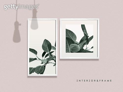 프레임, 인테리어, 액자 (예술도구), 미니멀라이프 (컨셉), 반려식물