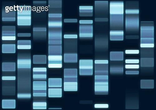 DNA Fingerprint 5