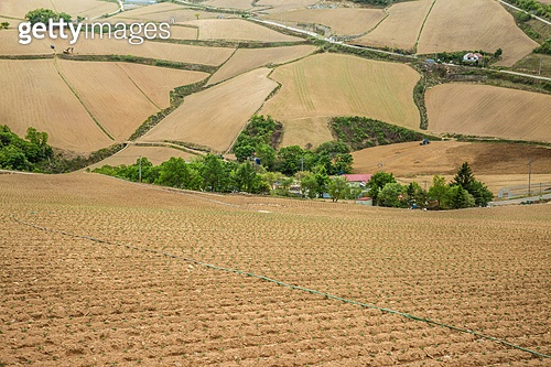 경작, 경작지, 쟁기질된밭 (들판)
