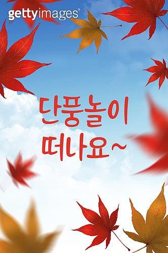 모바일백그라운드, 문자메시지 (전화걸기), 가을