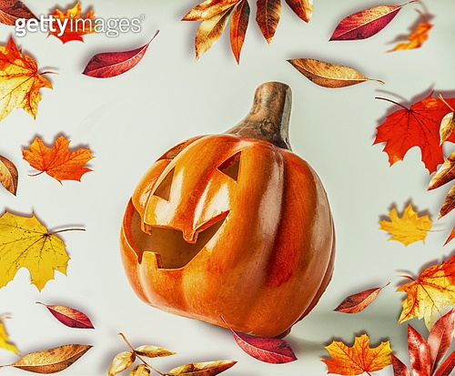 Funny Pumpkin Jack head with autumn foliage. Halloween and Thanksgiving  holiday concept